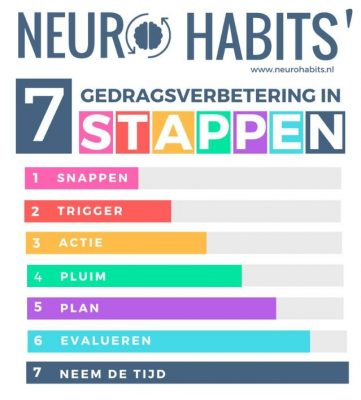 7 stappen infographic